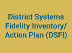 District Systems Fidelity Inventory/Action Plan (DSFI)